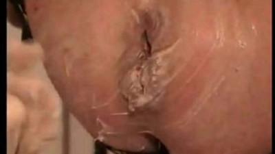anal  ass  asshole
